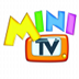 Mini TV Television TDT HD
